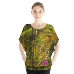 Dragonfly Dragonfly Wing Insect Blouse