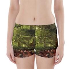 Red Deer Deer Roe Deer Antler Boyleg Bikini Wrap Bottoms