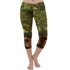Red Deer Deer Roe Deer Antler Capri Yoga Leggings