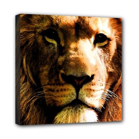 Lion  Mini Canvas 8  x 8