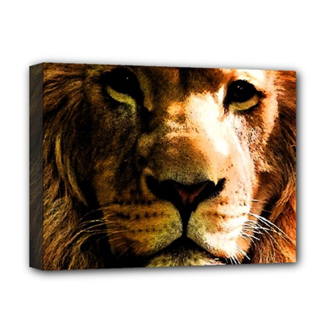 Lion  Deluxe Canvas 16  x 12