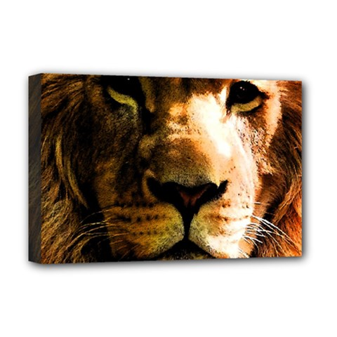 Lion  Deluxe Canvas 18  x 12
