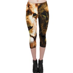 Lion  Capri Leggings