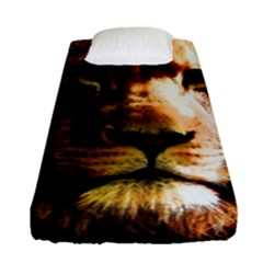 Lion  Fitted Sheet (Single Size)