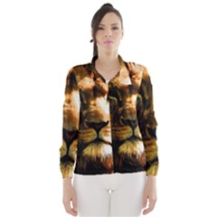 Lion  Wind Breaker (Women)