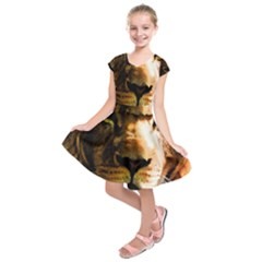 Lion  Kids  Short Sleeve Dress