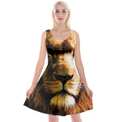 Lion  Reversible Velvet Sleeveless Dress