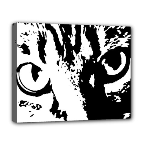 Cat Deluxe Canvas 20  x 16
