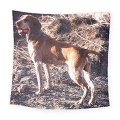Bracco Italiano Full 2 Square Tapestry (Large)