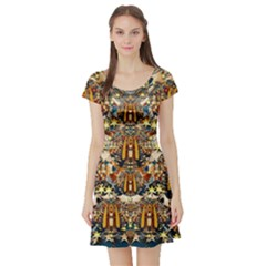 Lady Panda Goes Into The Starry Gothic Night Short Sleeve Skater Dress