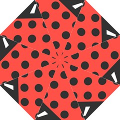 Abstract Bug Cubism Flat Insect Folding Umbrellas