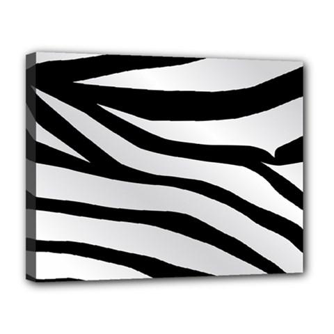 White Tiger Skin Canvas 14  x 11
