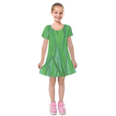 Pattern Kids  Short Sleeve Velvet Dress