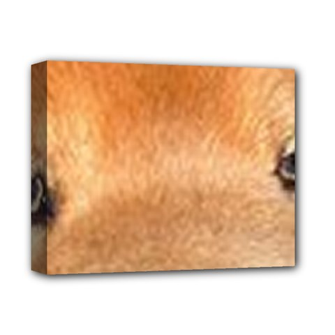 Chow Chow Eyes Deluxe Canvas 14  x 11