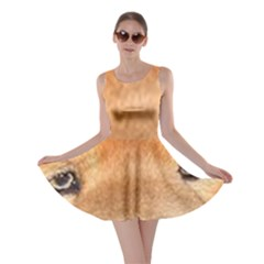 Chow Chow Eyes Skater Dress