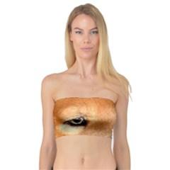 Chow Chow Eyes Bandeau Top