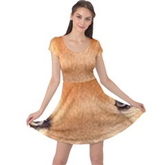 Chow Chow Eyes Cap Sleeve Dresses