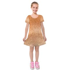 Chow Chow Eyes Kids  Short Sleeve Velvet Dress