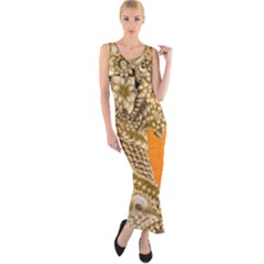 Img 20170328 150724 Fitted Maxi Dress
