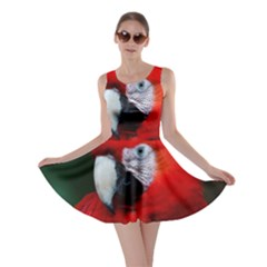 Scarlet Macaw Bird Skater Dress