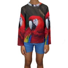 Scarlet Macaw Bird Kids  Long Sleeve Swimwear