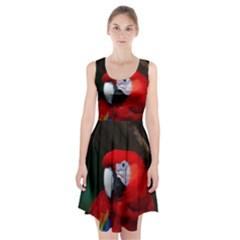 Scarlet Macaw Bird Racerback Midi Dress