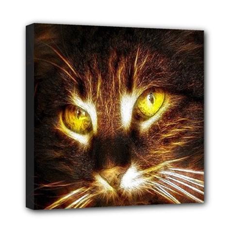 Cat Face Mini Canvas 8  x 8