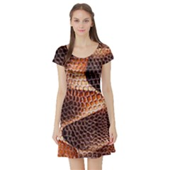 Snake Python Skin Pattern Short Sleeve Skater Dress