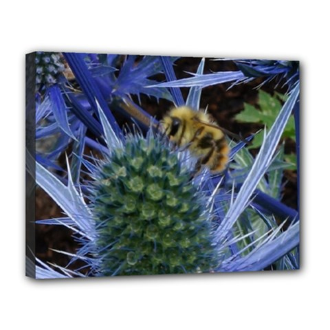 Chihuly Garden Bumble Canvas 14  x 11
