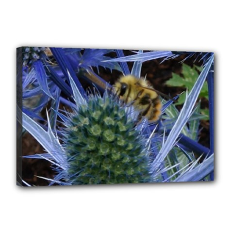 Chihuly Garden Bumble Canvas 18  x 12