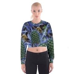 Chihuly Garden Bumble Cropped Sweatshirt