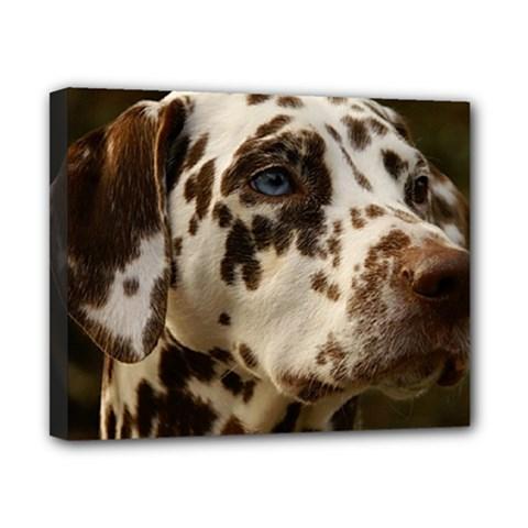 Dalmatian Liver Canvas 10  x 8