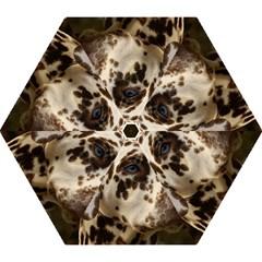 Dalmatian Liver Mini Folding Umbrellas