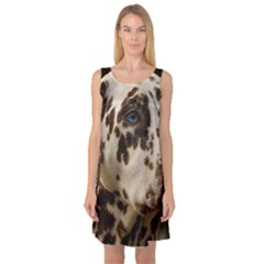 Dalmatian Liver Sleeveless Satin Nightdress