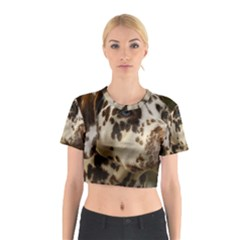 Dalmatian Liver Cotton Crop Top