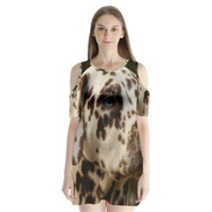 Dalmatian Liver Shoulder Cutout Velvet  One Piece