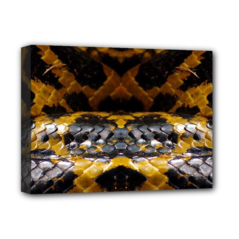 Textures Snake Skin Patterns Deluxe Canvas 16  x 12