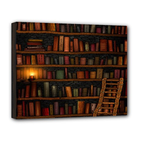 Books Library Deluxe Canvas 20  x 16