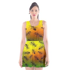 Insect Pattern Scoop Neck Skater Dress