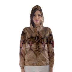 Cute Persian Catface In Closeup Hooded Wind Breaker (Women)