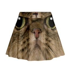 Cute Persian Catface In Closeup Mini Flare Skirt