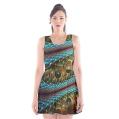 Fractal Snake Skin Scoop Neck Skater Dress