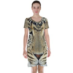 Leopard Face Short Sleeve Nightdress