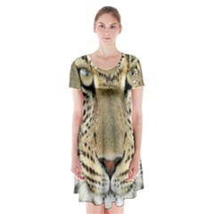 Leopard Face Short Sleeve V-neck Flare Dress