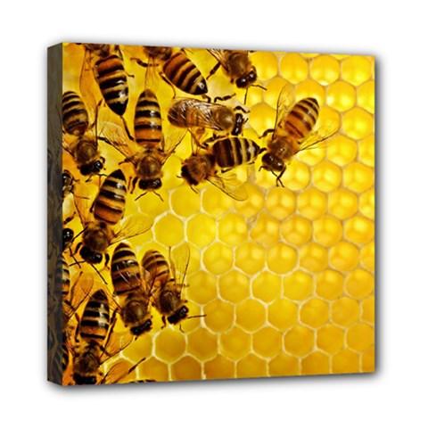 Honey Honeycomb Mini Canvas 8  x 8