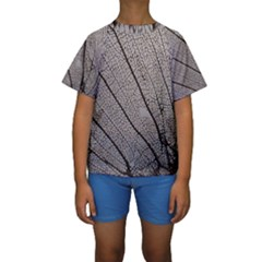 Sea Fan Coral Intricate Patterns Kids  Short Sleeve Swimwear