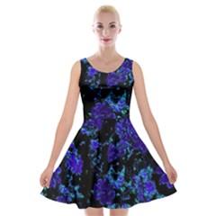 Floral Dreams 12 B Velvet Skater Dress