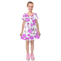 Floral Dreams 12 F Kids  Short Sleeve Velvet Dress