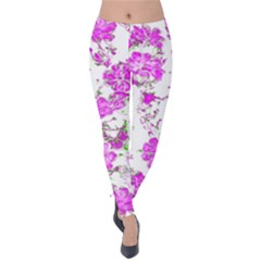 Floral Dreams 12 F Velvet Leggings