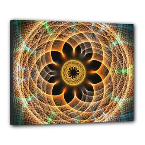 Mixed Chaos Flower Colorful Fractal Canvas 20  x 16